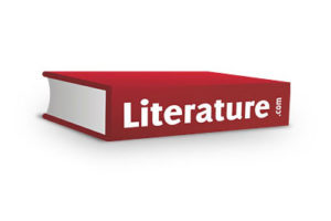 Why does literature matter?